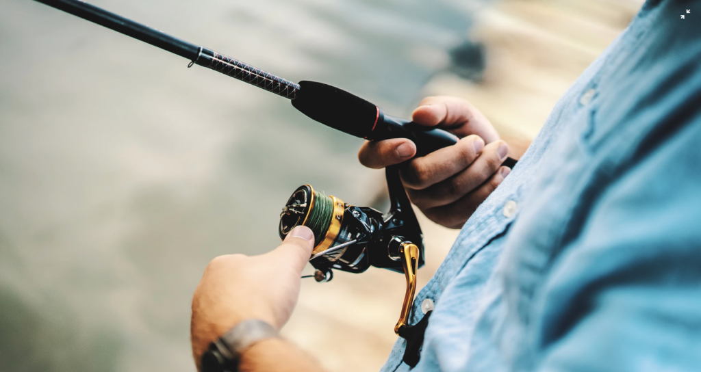 Volunteers needed for rec fishing licence advisory group