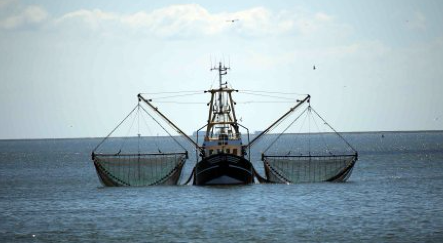 Gippsland Lakes commercial netting ban a step closer