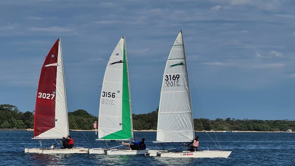 SYC to host 2020 Paper Tiger Cat State Championships