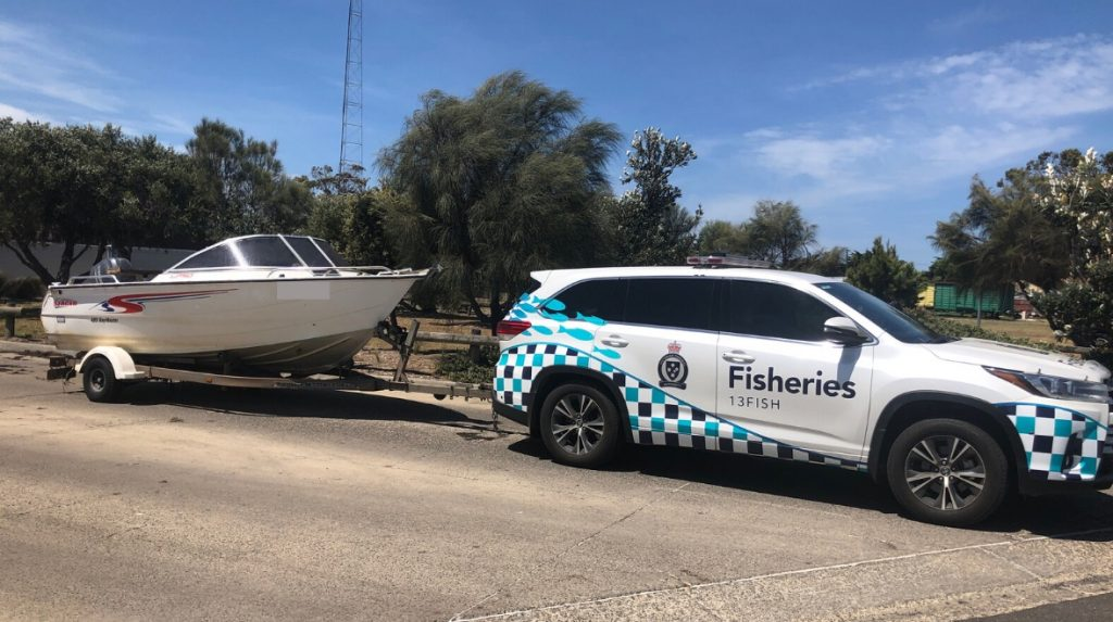 Illegal calamari catch leads to boat forfeiture
